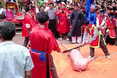 Bạo lực ở lễ hội: Do trót phục dựng... (!)