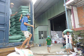 Xuất khẩu gạo tiếp tục gặp khó