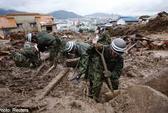 Sạt lở núi, 12 người Indonesia thiệt mạng