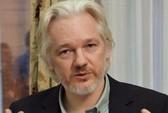 Ông chủ Wikileaks định nộp mình cho cảnh sát