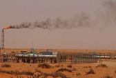 Ả Rập Saudi bán cổ phiếu khủng, tìm đường thoát phụ thuộc dầu mỏ