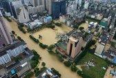 Dễ sợ hình ảnh bão Megi tràn vào Trung Quốc