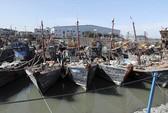 Hàn Quốc phản ứng mạnh vụ tàu cá Trung Quốc đâm chìm tàu tuần duyên