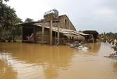 Áp thấp gây gió giật mạnh, mưa to ở Nam Bộ và Nam Trung bộ