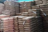 Doanh nghiệp nhập khẩu lúa mì