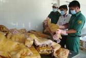 Nghịch lý hàng ngon thì xuất khẩu, thực phẩm bẩn
