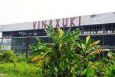 Nhà máy ô tô Vinaxuki nghìn tỉ hoen gỉ, cỏ mọc dày
