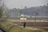 Báo động nạn đói ở Triều Tiên
