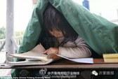 Chạnh lòng bé gái ăn xin trùm chăn học bài trên phố