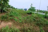 """53 tỉ đồng cắt cỏ, Đại lộ Thăng Long vẫn như """"rừng"""""""