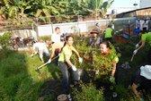Cải thiện môi trường sống