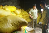 Phát hiện hàng chục tấn phân bón không rõ nguồn gốc