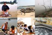 Toàn cảnh vụ cá chết hàng loạt ở miền Trung