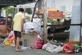 Vô tư đổ rác dưới biển cấm