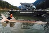 Bắt sống cá tầm quái vật gần 300 kg