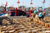 Quy hoạch chi tiết 5 cảng biển Nam Trung Bộ