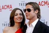 Angelina Jolie thuê chuyên gia xử lý khủng hoảng