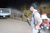 Phát hiện ca nhiễm virus Zika đầu tiên ở Bà Rịa-Vũng Tàu