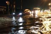 TP HCM ngập nặng nhiều nơi, cây bật gốc đè ô tô