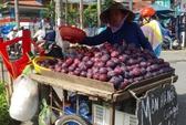 Mận Trung Quốc gắn mác Hà Nội trên đường phố Sài Gòn