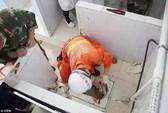 Giải cứu bé sơ sinh kẹt trong ống xả bồn cầu bệnh viện