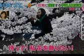 Du khách Trung Quốc lại bị bêu rếu ở Nhật Bản