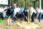 Trồng hàng ngàn cây xanh tại ngã ba Đồng Lộc