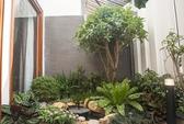 Ngôi nhà Sài Gòn có vườn cây xanh mát