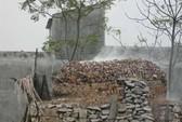 8 người chết do ngạt khí lò vôi