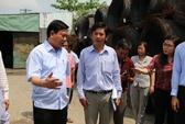 Bí thư Đinh La Thăng truy chủ tịch xã về công ty gây ô nhiễm