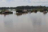 Ngập tràn ký ức khi ngang sông mùa lũ