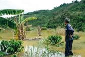 Thủy điện chặn dòng, dân thiệt hại nặng