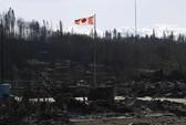 Canada: Cháy rừng dữ dội, gấu tràn vào thành phố kiếm ăn