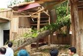 4 người bị sét đánh thương vong do ảnh hưởng bão