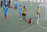 Gần 1.000 vận động viên dự hội thao SAMCO