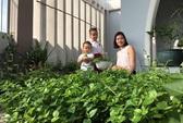 Ngắm vườn rau quả xanh mướt của mẹ 8X ở Sài Gòn