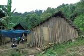 Phó Thủ tướng: Khẩn trương điều tra vụ thảm sát ở Lào Cai