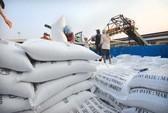 Gạo Việt gặp khó ở Mỹ