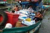 180 ghe cào cướp hàng tấn sò của ngư dân giữa ban ngày