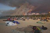 Cháy rừng hầm hập, du khách chạy ra biển ngủ