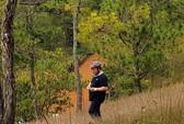 Người đàn ông ở TP HCM treo cổ trên đồi thông Đà Lạt