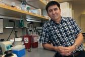 Tranh cãi từ chỉnh sửa gien