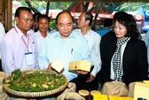 Phát triển bền vững cà phê, bảo đảm sinh kế cho nông dân