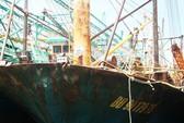 Đề nghị công an điều tra vụ tàu vỏ thép bị hỏng