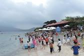 Biển Việt Nam bị đầu độc quá nhiều!