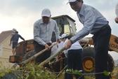 Chủ tịch Đà Nẵng cùng 3.000 người dân làm sạch môi trường đón APEC