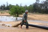 Phú Yên chỉ đạo kiểm tra nhanh vụ hút cát sông Đà Rằng