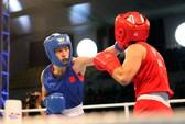Bước tiến của boxing nữ Việt Nam