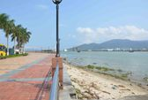 Không có chuyện Thủ tướng chỉ đạo dừng dự án hầm chui qua sông Hàn