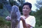 Đổi đời nhờ săn cá ở Bản Vẽ